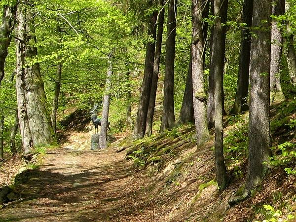 über die Hirschallee spaziert man vom Schloss zum Hirschdenkmal