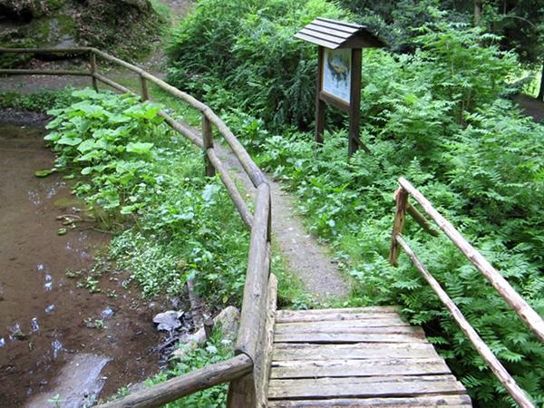 an einem kleinen Teich und einer Grotte beginnt die Entdeckungstour durch den Harzgarten