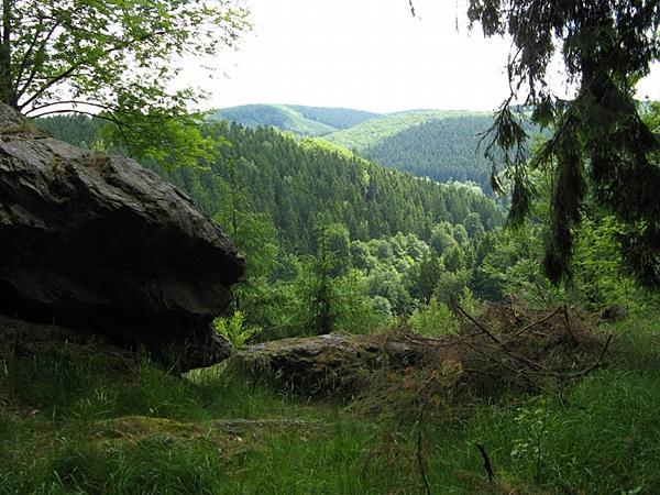 Blick ins Krummschlachttal bei Stolberg Harz
