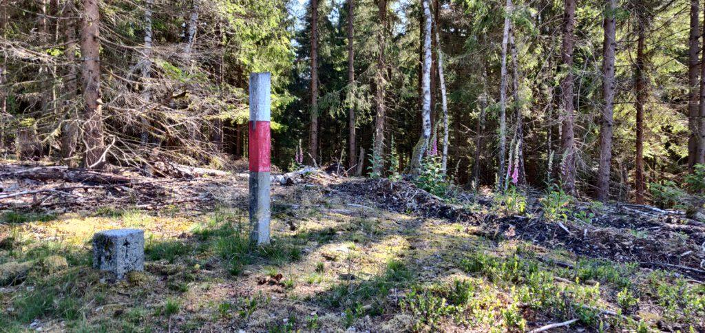 Birkenkopf