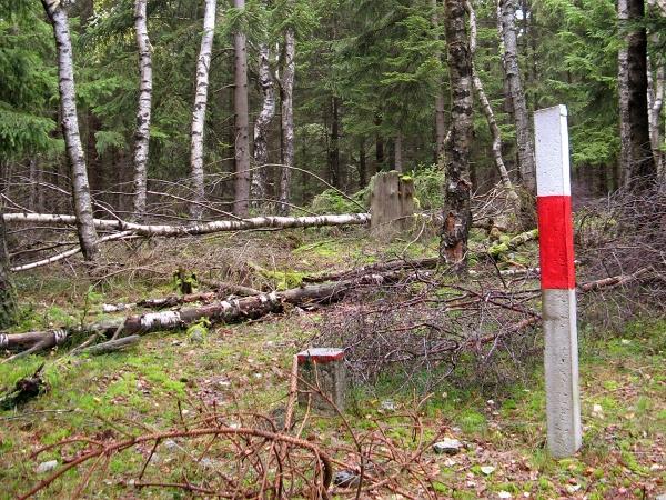 Topografischer Punkt am Birkenkopf bei Stolberg Harz