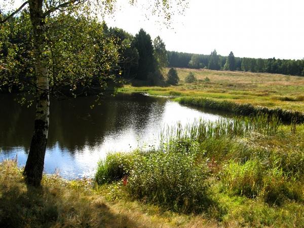 Am 3 Fritzen Teich