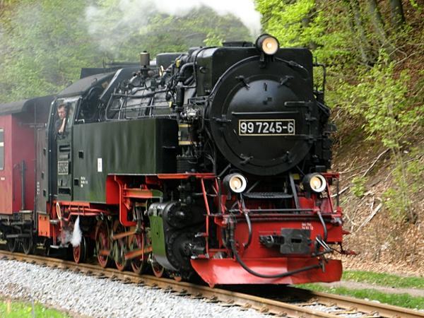 Harzquerbahn am Bahnhof Netzkater