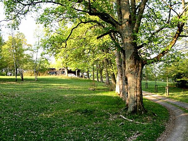 Am Platz des ehemaligen Forsthauses Eichenforst steht heute ein Ferienhaus
